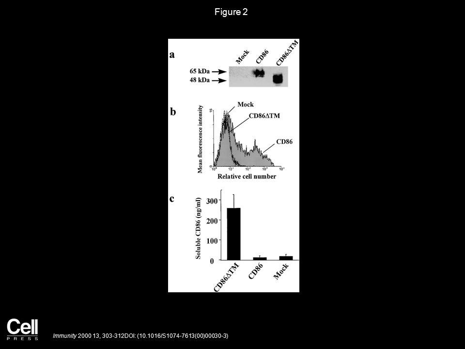 Figure 2 Immunity 2000 13, 303-312DOI: (10.1016/S1074-7613(00)00030-3)