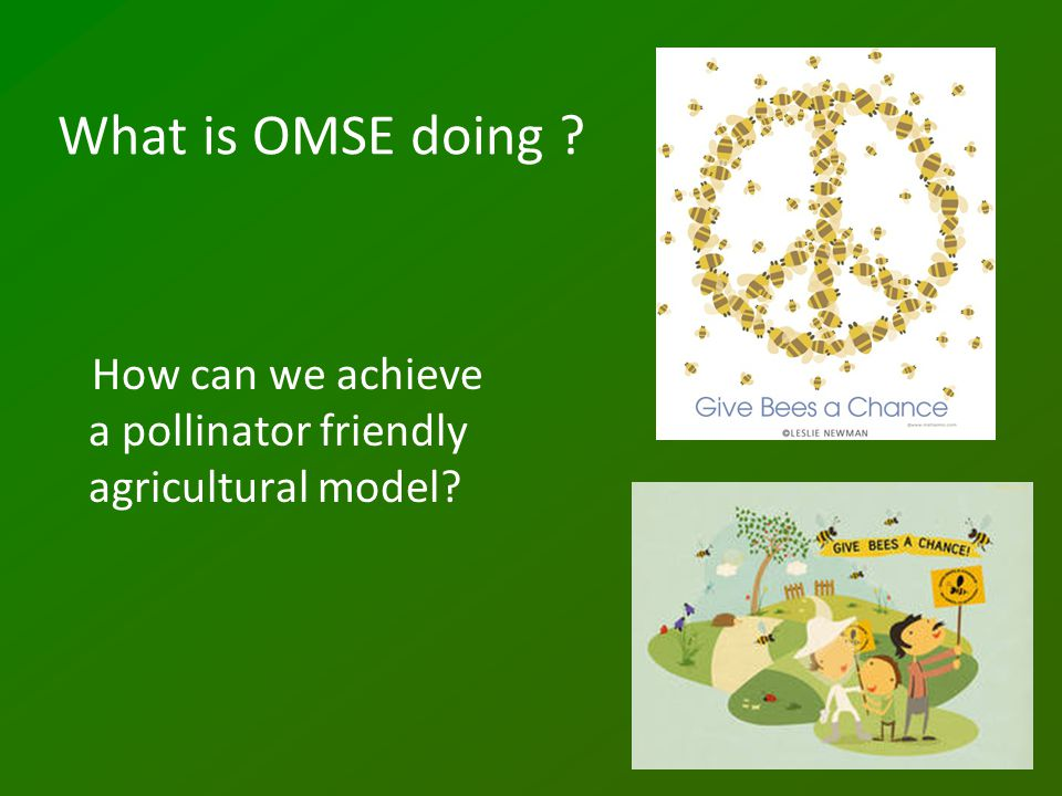 What is OMSE doing ? How can we achieve a pollinator friendly agricultural model?