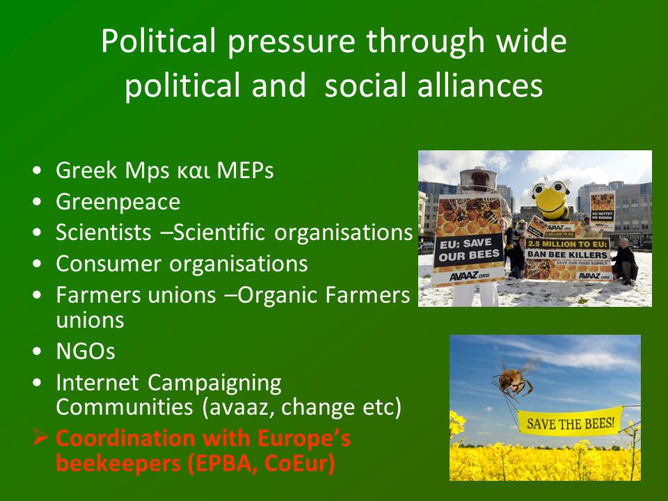Political pressure through wide political and social alliances Greek Mps και MEPs Greenpeace Scientists –Scientific organisations Consumer organisatio