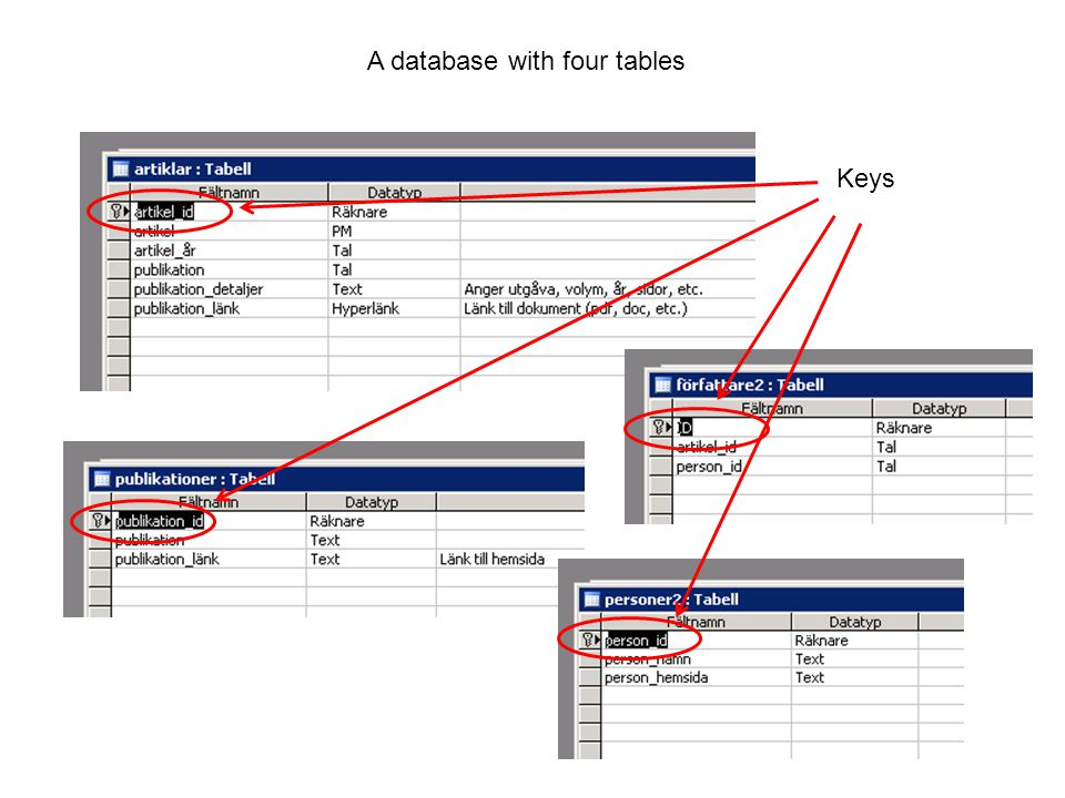Board data PAR / Bisnode database Tables Basic company data One record per company.