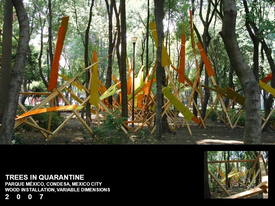 TREES IN QUARANTINE PARQUE MÉXICO, CONDESA, MEXICO CITY WOOD INSTALLATION, VARIABLE DIMENSIONS 2 0 0 7