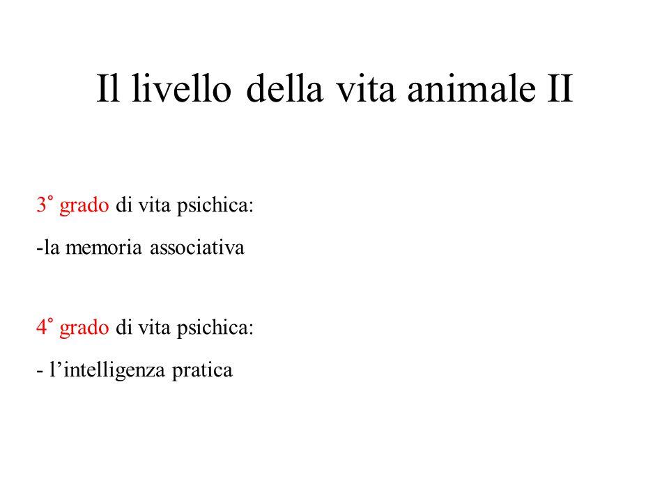 Il livello della vita animale II 3° grado di vita psichica: -la memoria associativa 4° grado di vita psichica: - l'intelligenza pratica