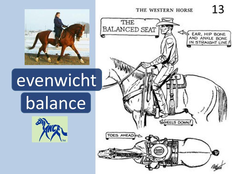 13 evenwicht balance 13