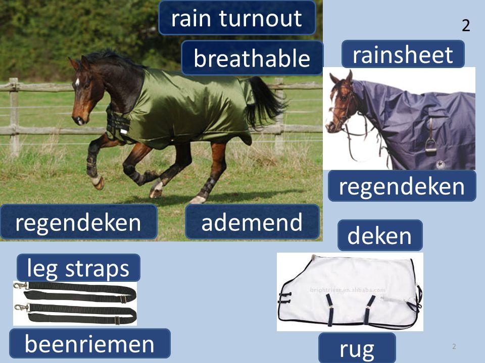 regendeken rain turnout 2 2 breathable ademendregendeken rainsheet leg straps beenriemen rug deken
