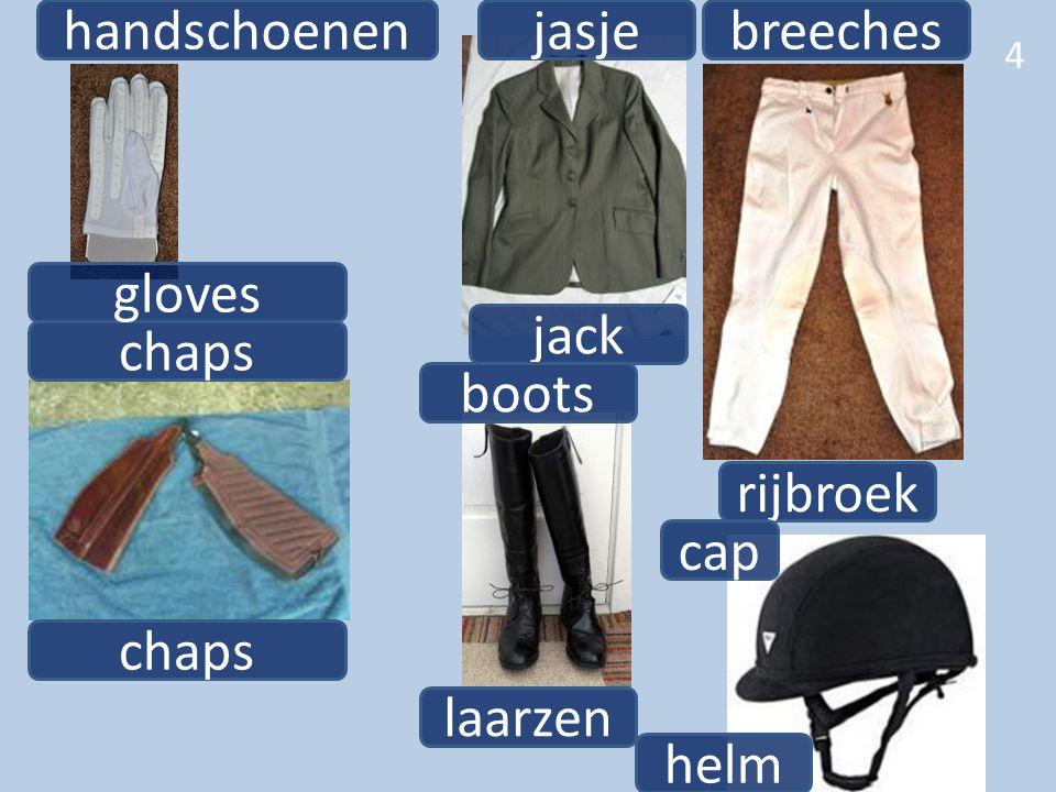 4 chaps handschoenen gloves jack jasje boots laarzen rijbroek breeches cap helm