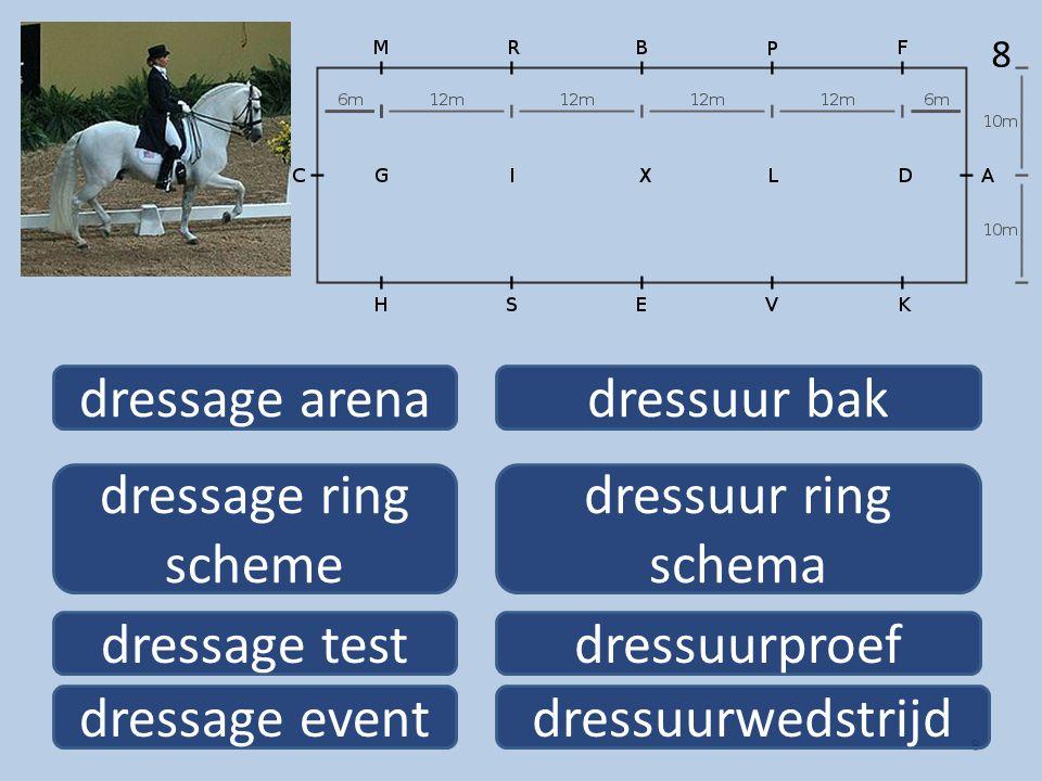 8 8 dressage event dressage ring scheme dressage arena dressage test dressuurwedstrijd dressuur ring schema dressuur bak dressuurproef