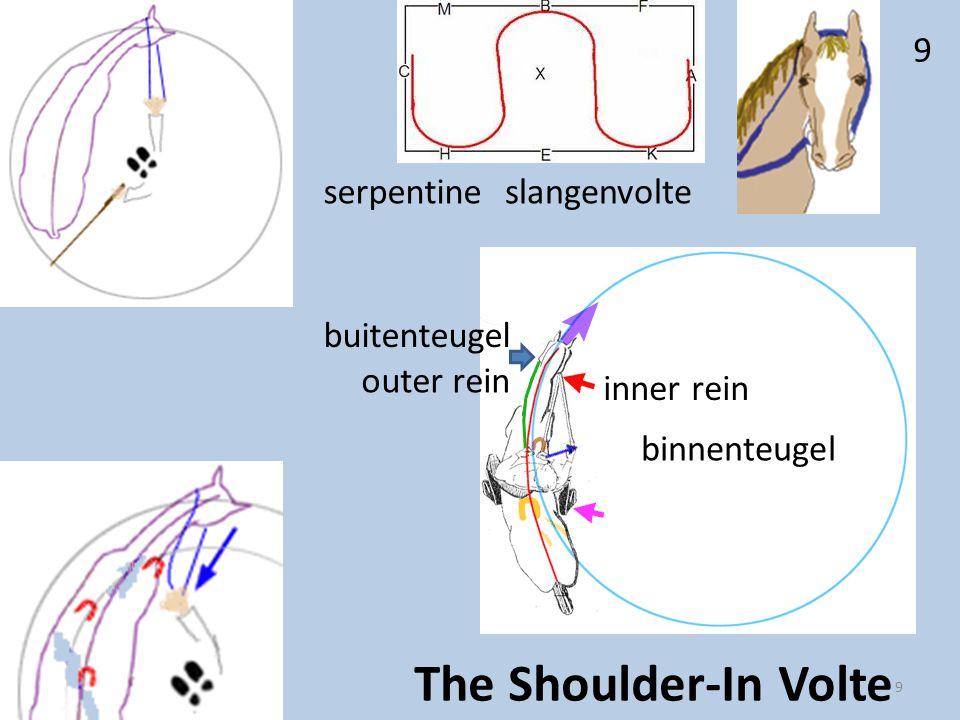 outer rein inner rein buitenteugel binnenteugel 9 9 The Shoulder-In Volte serpentineslangenvolte