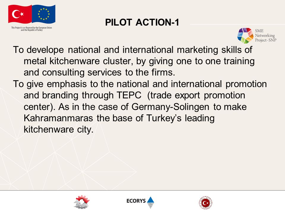PILOT ACTION-1 To develope national and international marketing skills of metal kitchenware cluster, by giving one to one training and consulting services to the firms.