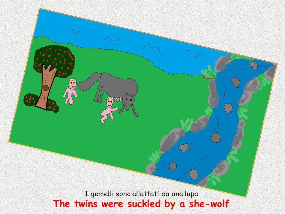 I gemelli sono allattati da una lupa The twins were suckled by a she-wolf