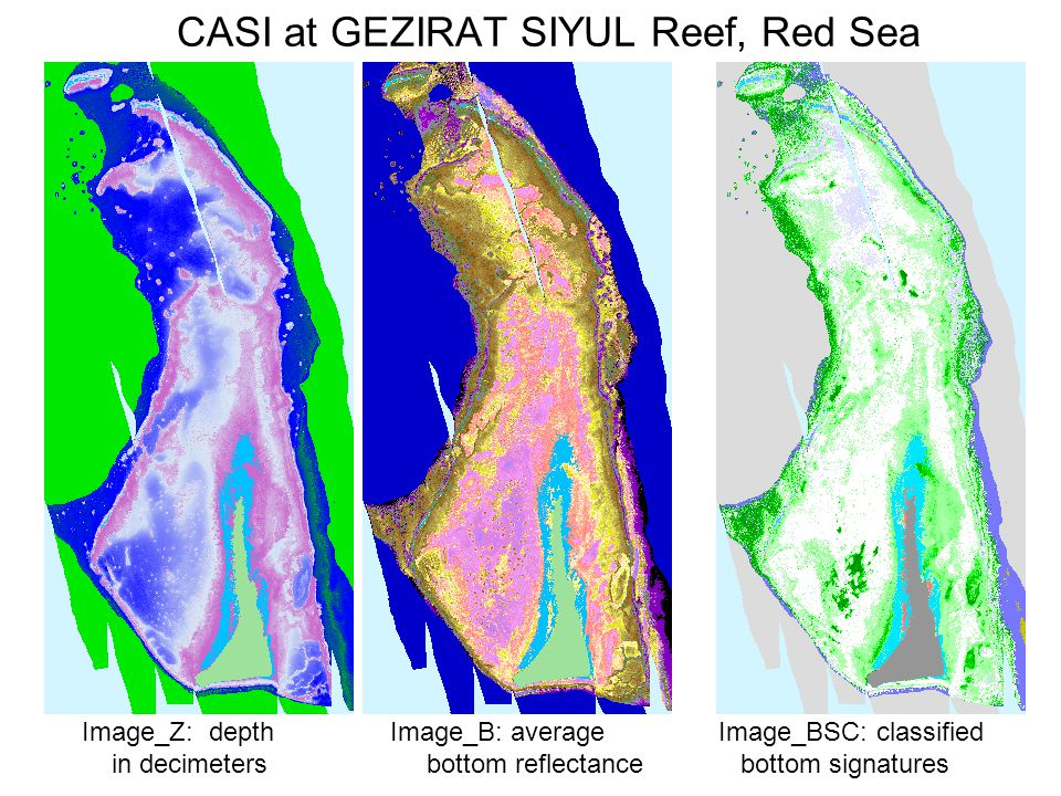 CASI at GEZIRAT SIYUL Reef, Red Sea Image_Z: depth Image_B: average Image_BSC: classified in decimeters bottom reflectance bottom signatures