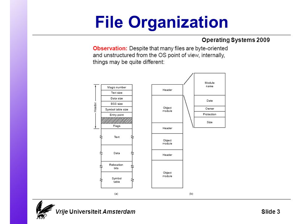 File Organization Operating Systems 2009 Vrije Universiteit AmsterdamSlide 3