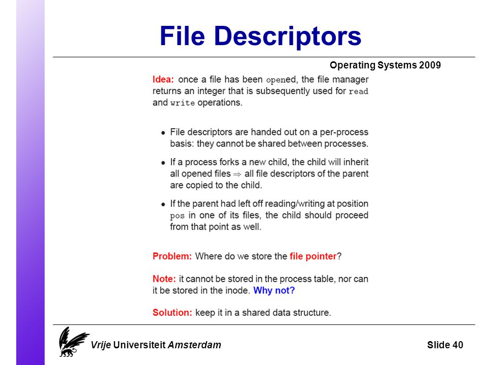 File Descriptors Operating Systems 2009 Vrije Universiteit AmsterdamSlide 40
