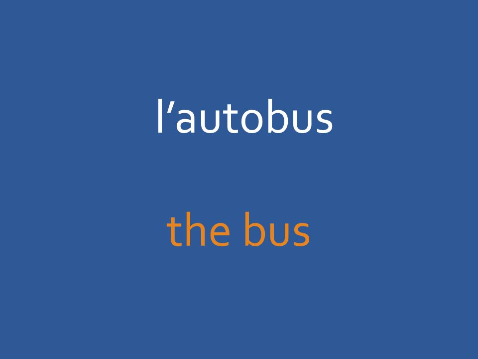 l'autobus the bus