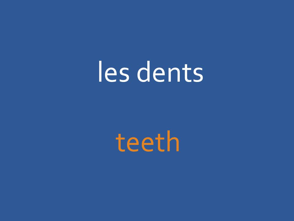 les dents teeth