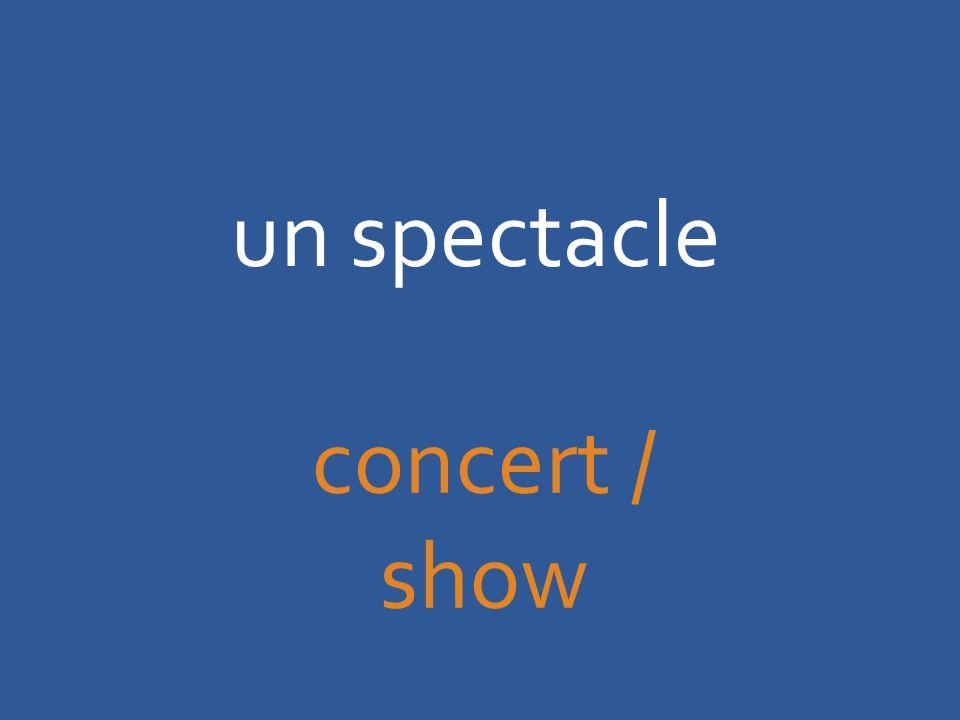 un spectacle concert / show