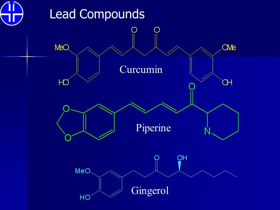 Gingerol Curcumin Piperine Lead Compounds