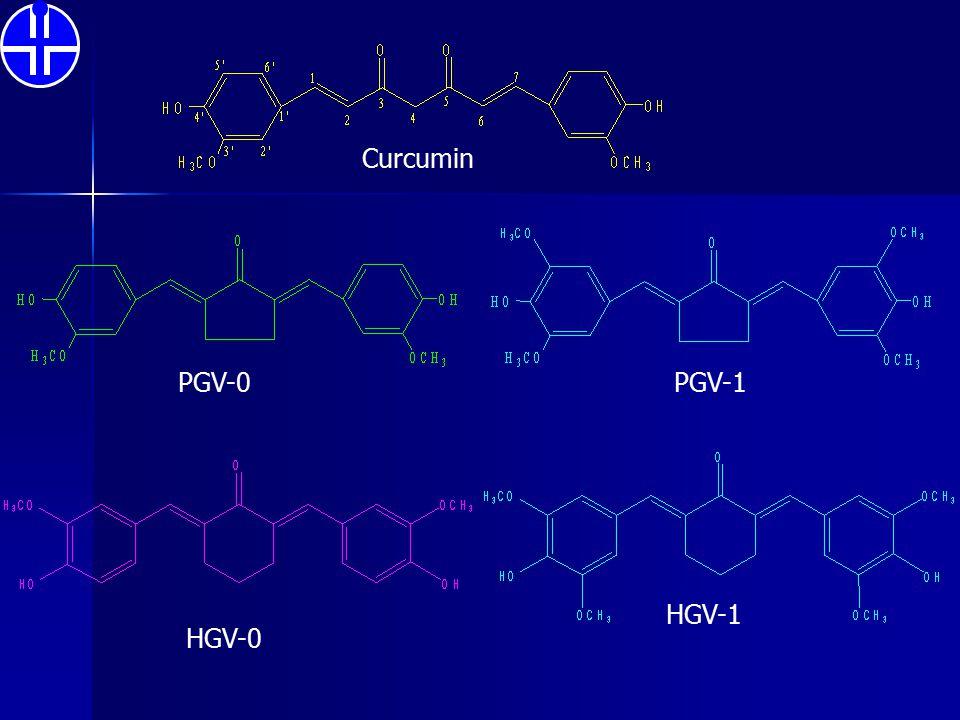 Curcumin PGV-0 HGV-0 PGV-1 HGV-1