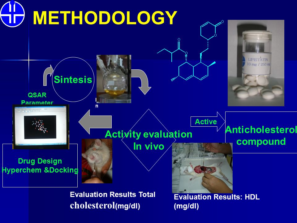 METHODOLOGY Sintesis Activity evaluation In vivo Drug Design Hyperchem &Docking Active Anticholesterol compound QSAR Parameter Identificatio n Evaluat