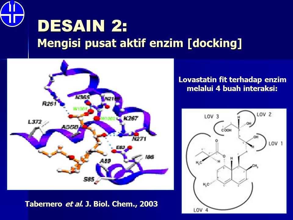 DESAIN 2: Mengisi pusat aktif enzim [docking] Tabernero et al. J. Biol. Chem., 2003 Lovastatin fit terhadap enzim melalui 4 buah interaksi: