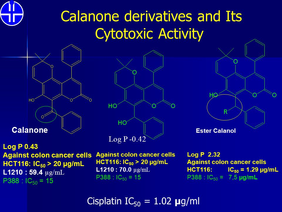 Calanone derivatives and Its Cytotoxic Activity Calanone Ester Calanol Log P 2.32 Against colon cancer cells HCT116: IC 50 = 1.29 µg/mL P388 : IC 50 =
