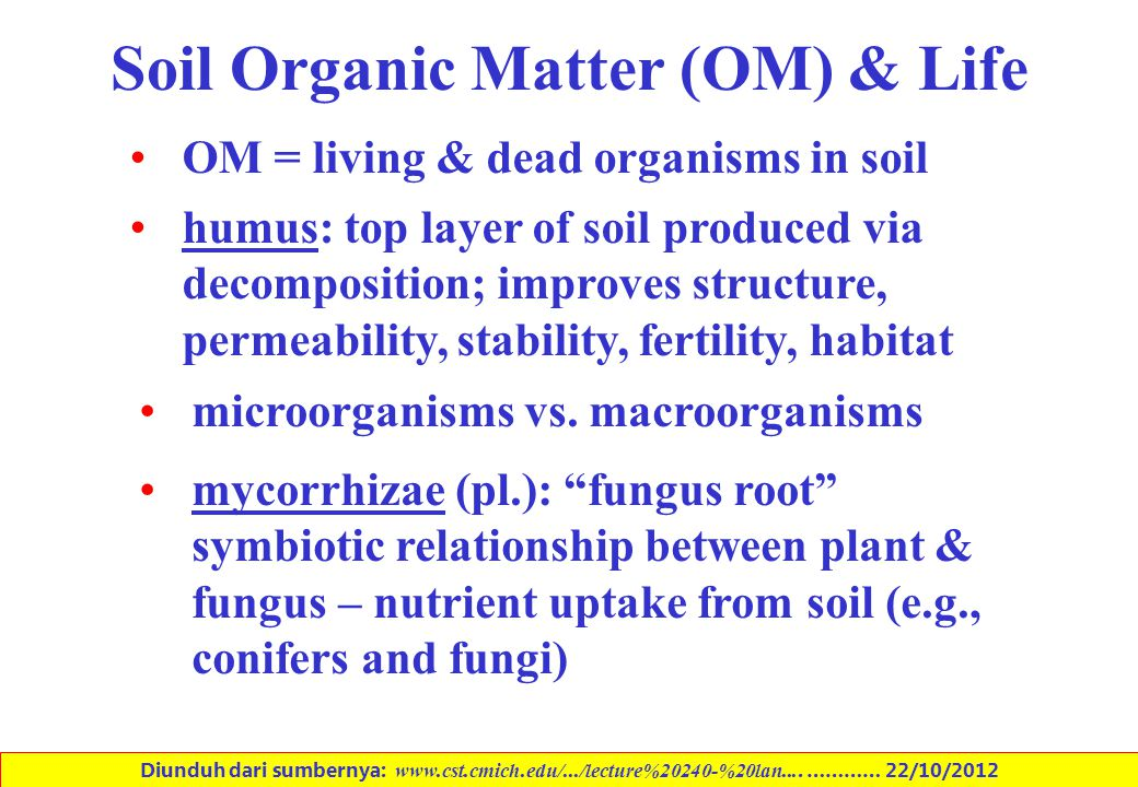 Soil Organic Matter (OM) & Life OM = living & dead organisms in soil humus: top layer of soil produced via decomposition; improves structure, permeabi