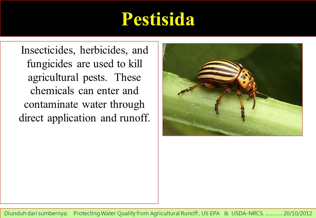 Pestisida Insecticides, herbicides, and fungicides are used to kill agricultural pests. These chemicals can enter and contaminate water through direct