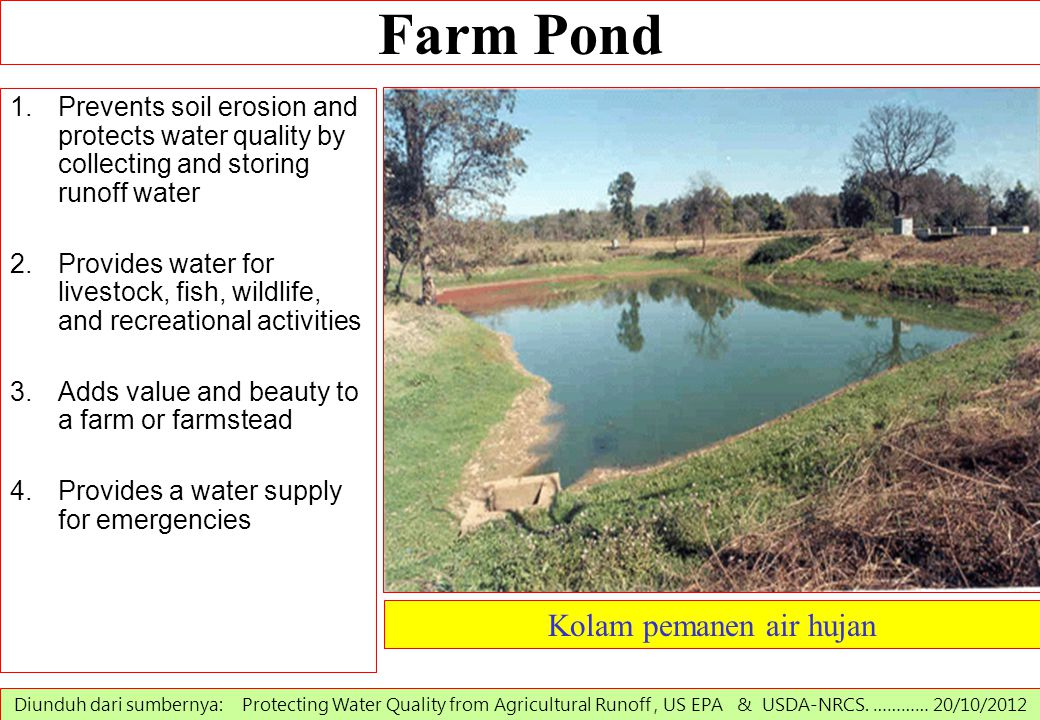 Farm Pond 1.Prevents soil erosion and protects water quality by collecting and storing runoff water 2.Provides water for livestock, fish, wildlife, an