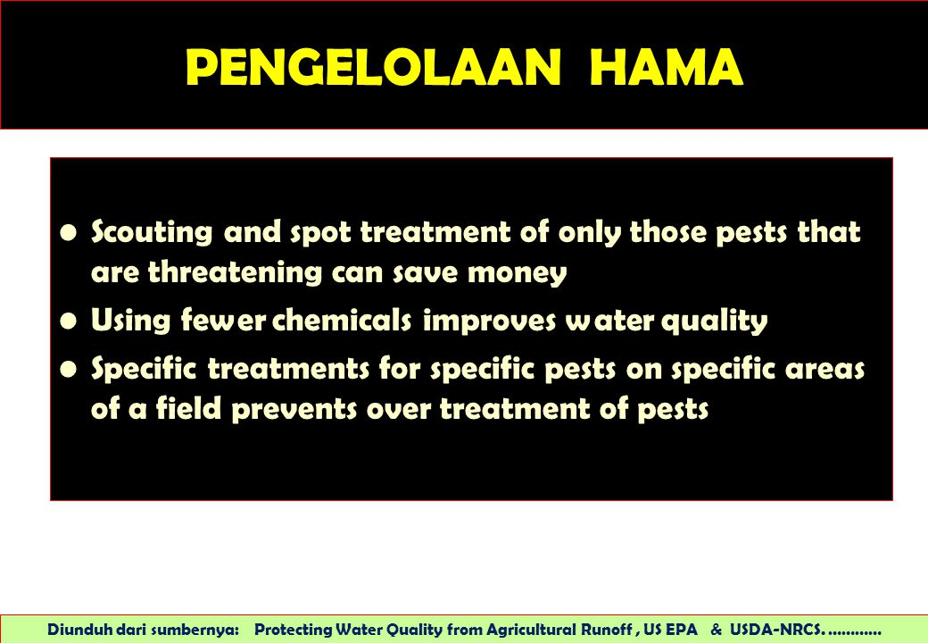 PENGELOLAAN HAMA Scouting and spot treatment of only those pests that are threatening can save money Using fewer chemicals improves water quality Spec