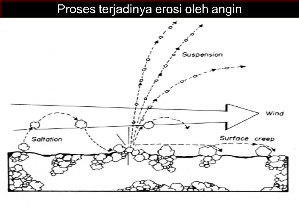 Proses terjadinya erosi oleh angin