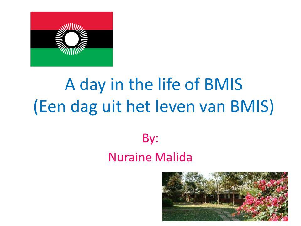 A day in the life of BMIS (Een dag uit het leven van BMIS) By: Nuraine Malida