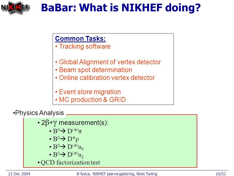 21 Dec 2004B-fysica. NIKHEF jaarvergadering, Niels Tuning16/53 BaBar: What is NIKHEF doing.