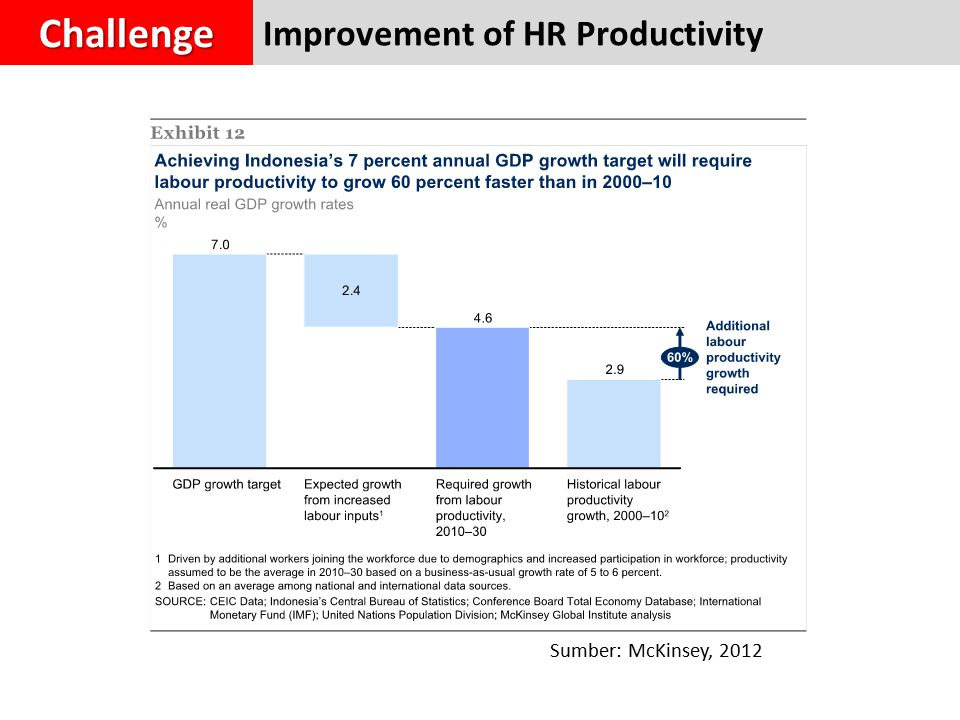 Improvement of HR ProductivityChallenge Sumber: McKinsey, 2012