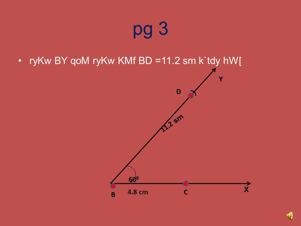 pg 2 ے XBY ibMdU B qy 60 0 dy kox dI rcnw krdy hW[ X B 4.8 cm Y 60 0