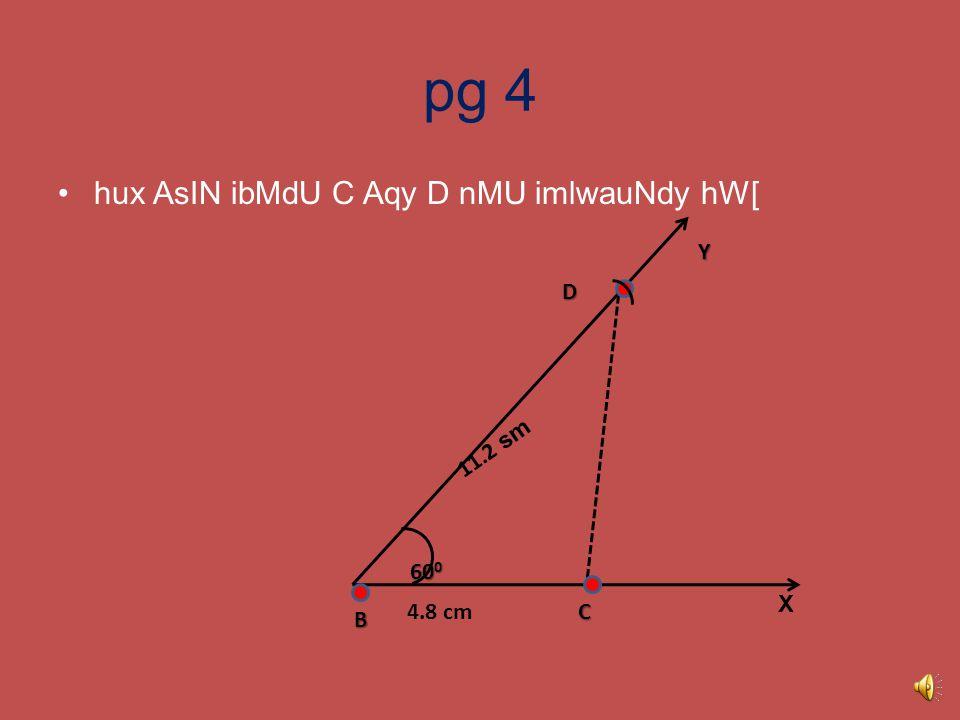 pg 3 ryKw BY qoM ryKw KMf BD =11.2 sm k`tdy hW[ B C D Y 60 0 11.2 sm 4.8 cm X