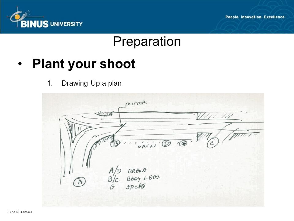 Bina Nusantara Preparation Plant your shoot 1.Drawing Up a plan