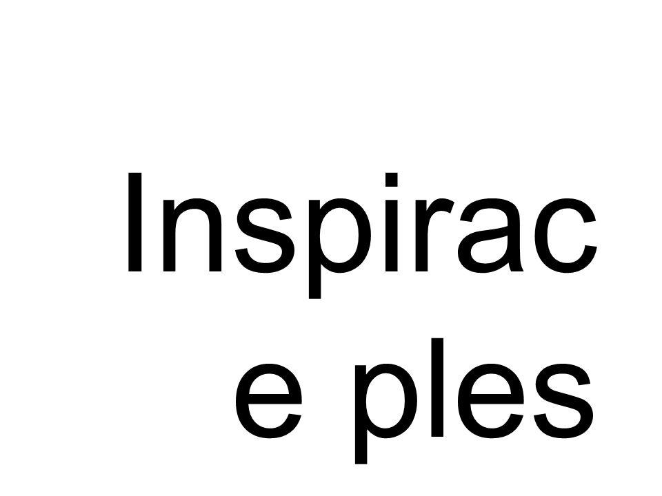 Inspirac e ples 2010