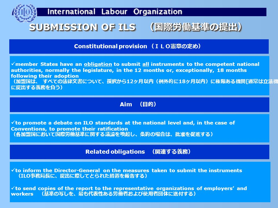 FROM INTERNATIONAL ADOPTION TO NATIONAL IMPLEMENTATION 国際的な場での採択から、国内における実行へ 国際的な場での採択から、国内における実行へ