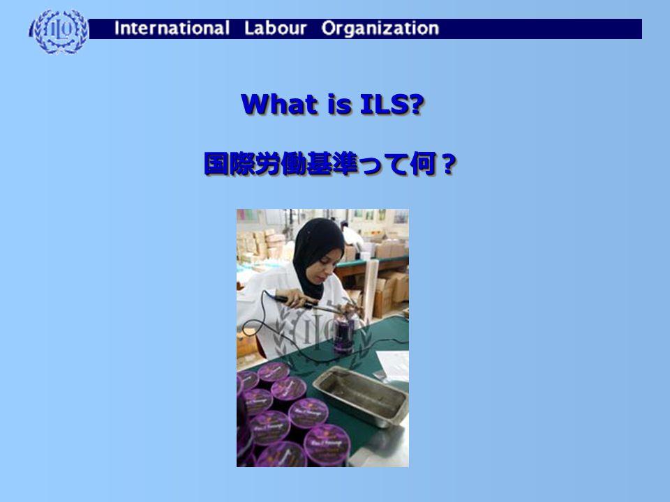 Training Programme for NWJ NTT 労組国際研修プログラム International Labour Standard System 国際労働基準制度 2005 年5月31日