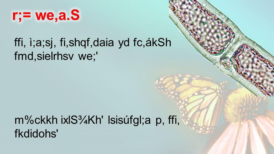 ffi, ì;a;sj, fi,shqf,daia yd fc,ákSh fmd,sielrhsv we; m%ckkh ixlS¾Kh lsisúfgl;a p, ffi, fkdidohs