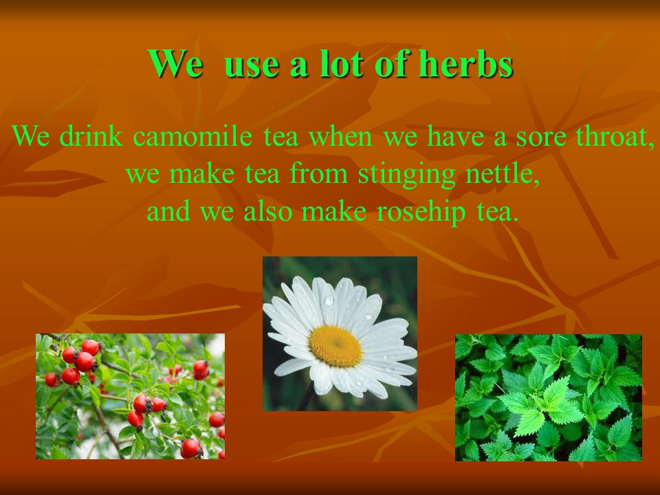 We use a lot of herbs We drink camomile tea when we have a sore throat, we make tea from stinging nettle, and we also make rosehip tea.