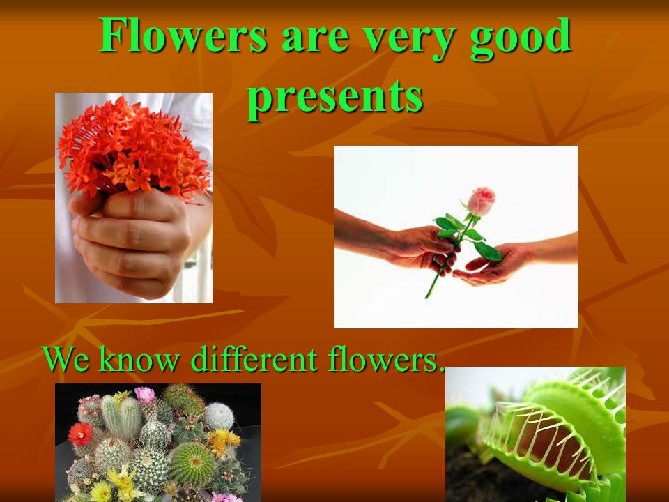 Flowers are very good presents We know different flowers.