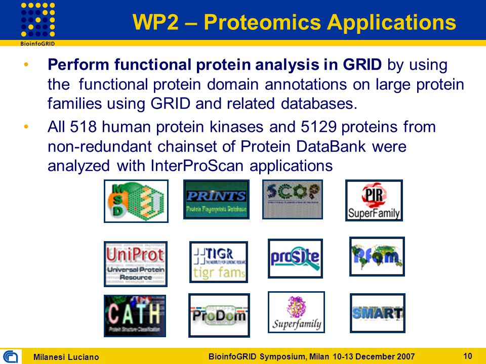 Milanesi Luciano BioinfoGRID Symposium, Milan 10-13 December 2007 10 WP2 – Proteomics Applications Perform functional protein analysis in GRID by using the functional protein domain annotations on large protein families using GRID and related databases.