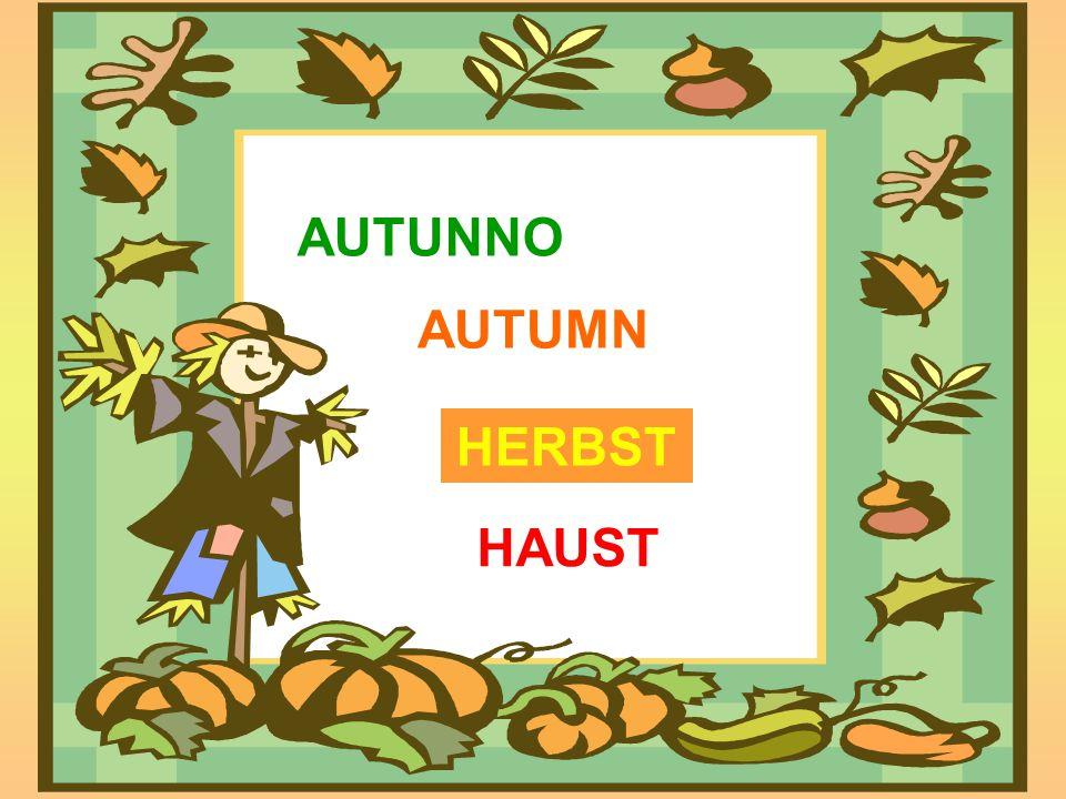 AUTUNNO HERBST HAUST AUTUMN