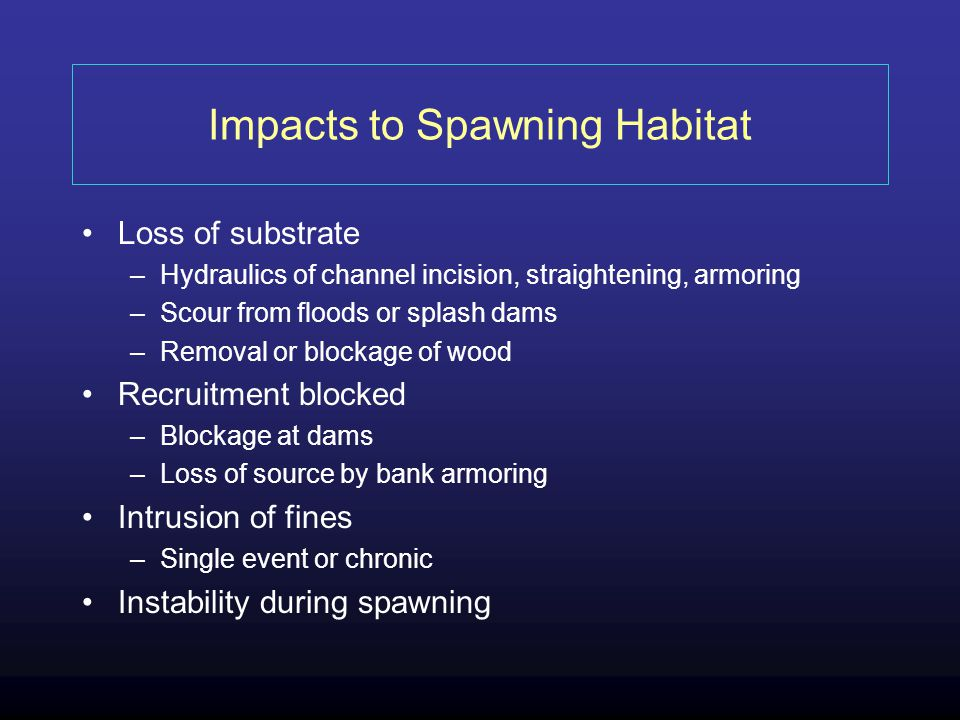 Impacts to Spawning Habitat Loss of substrate –Hydraulics of channel incision, straightening, armoring –Scour from floods or splash dams –Removal or blockage of wood Recruitment blocked –Blockage at dams –Loss of source by bank armoring Intrusion of fines –Single event or chronic Instability during spawning