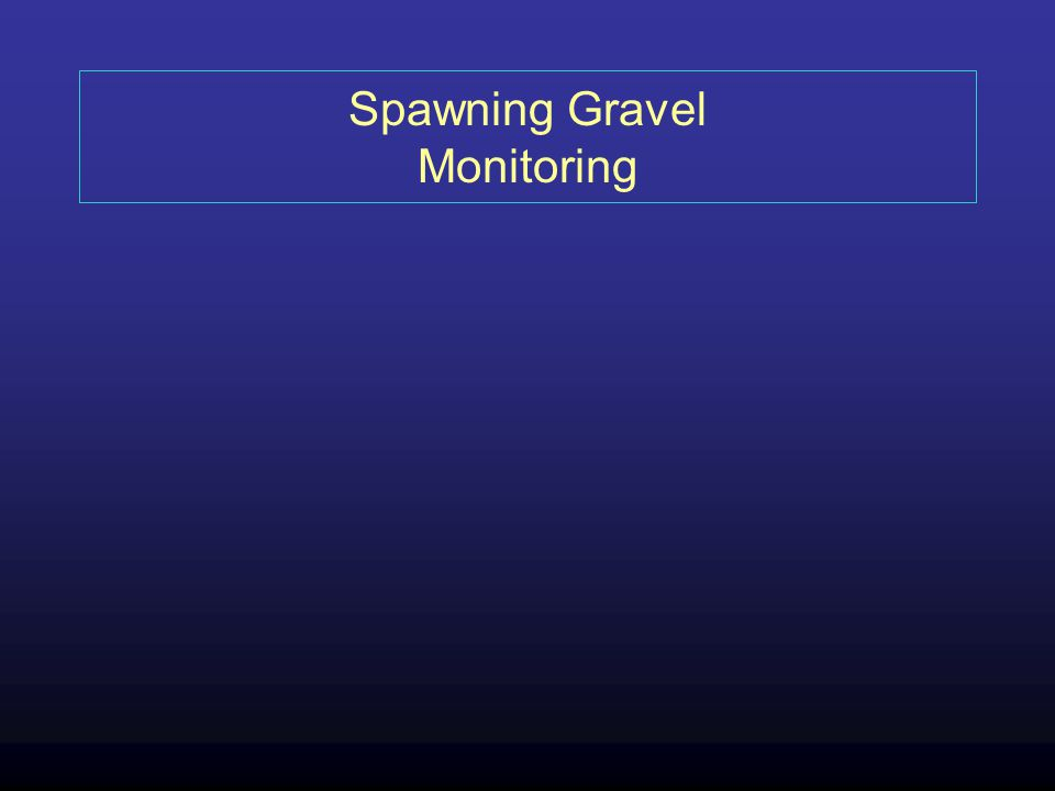 Spawning Gravel Monitoring