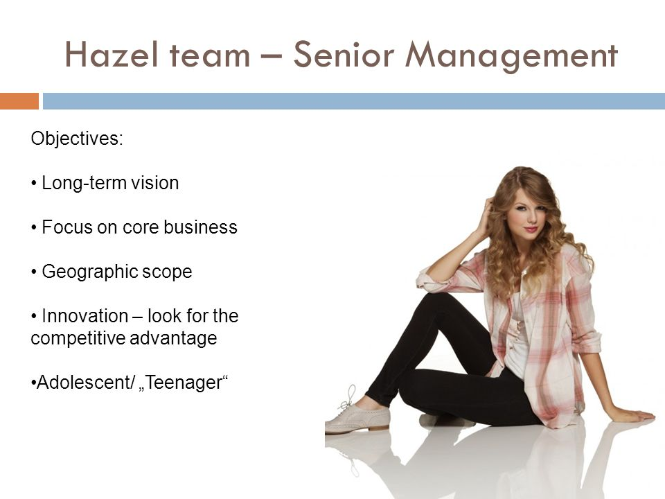 """Hazel team – Senior Management Objectives: Long-term vision Focus on core business Geographic scope Innovation – look for the competitive advantage Adolescent/ """"Teenager"""