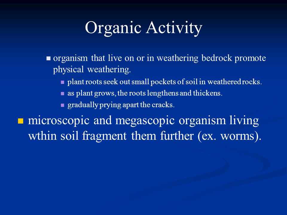 Organic Activity organism that live on or in weathering bedrock promote physical weathering.