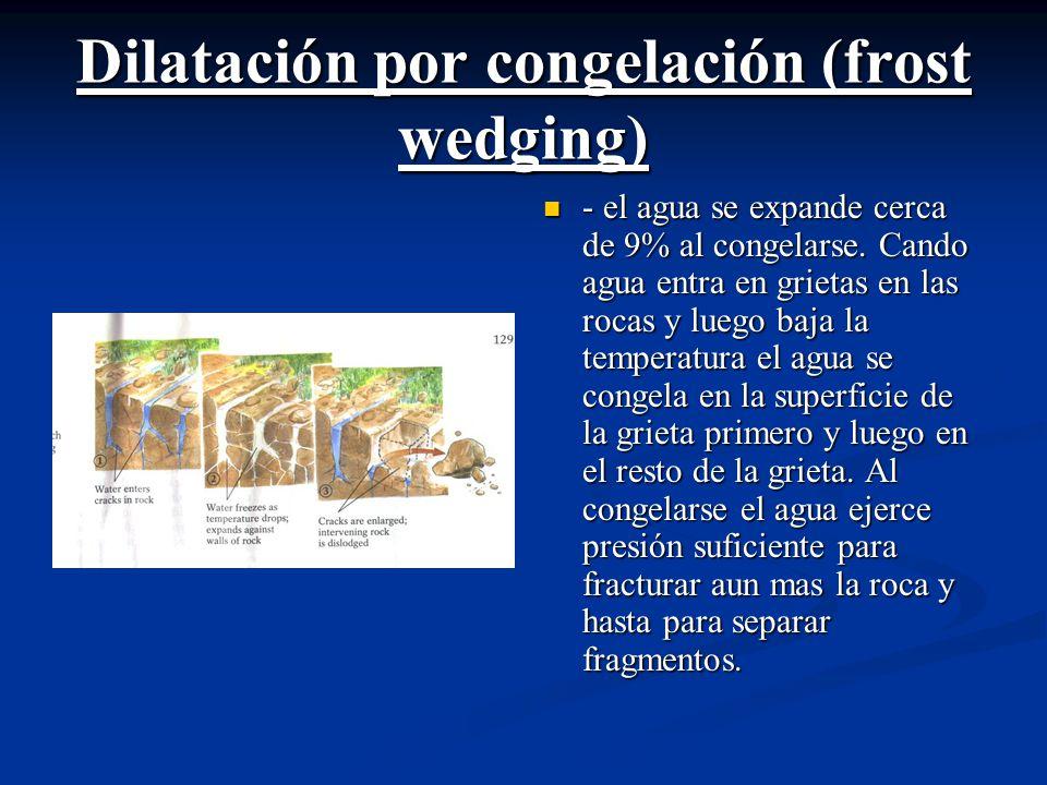 Dilatación por congelación (frost wedging) - el agua se expande cerca de 9% al congelarse.