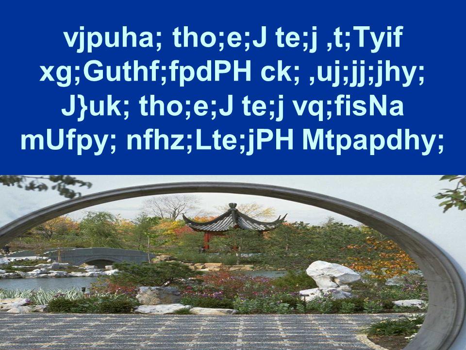 vjpuha; tho;e;J te;j,t;Tyif xg;Guthf;fpdPH ck;,uj;jj;jhy; J}uk; tho;e;J te;j vq;fisNa mUfpy; nfhz;Lte;jPH Mtpapdhy;