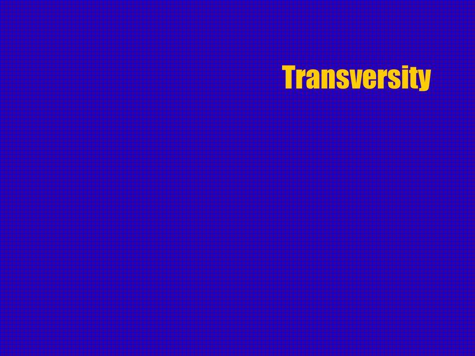 Transversity